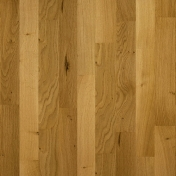 Oak Venus Lacquered